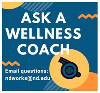 Wellness Logo Web