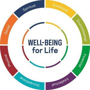 Wellnesscircle Fullwheel Orig
